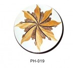 PH-019